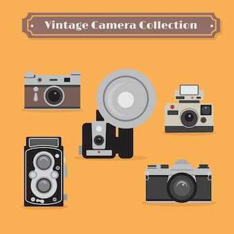 Vintage camera collection