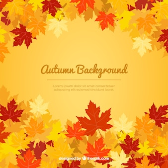 Warm autumnal background