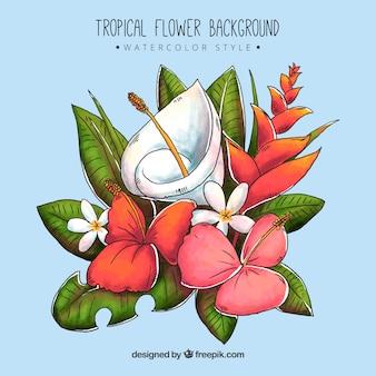 水の色のスタイルの熱帯の花の背景