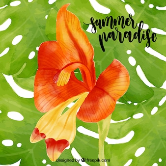 Water color summer paradise - tropical flower background