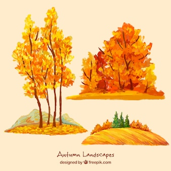Watercolor autumnal trees