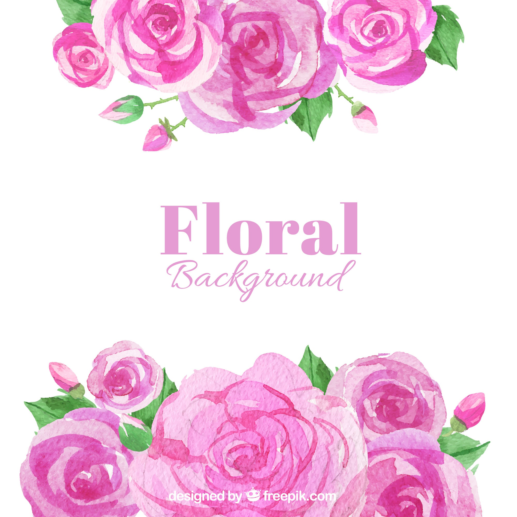 Watercolor background of roses in pink tones