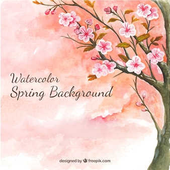 Watercolor background with cherry tree