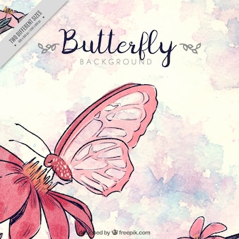 Watercolor background with flower and butterfly