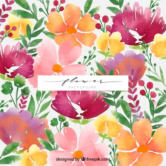 Watercolor background with variety of flowers