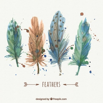 Watercolor bird feathers
