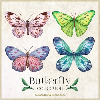 Watercolor butterflies with abstract shapes wings