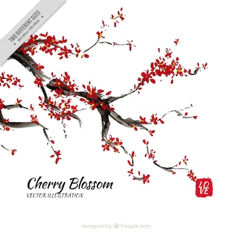 Watercolor cherry blossoms branch background