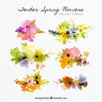 Watercolor collection of abstract flowers