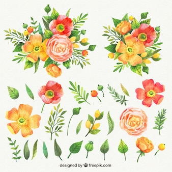Watercolor collection of nice flowers