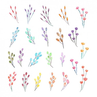 Watercolor decorative flowers collection
