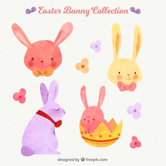 Watercolor easter rabbit pack