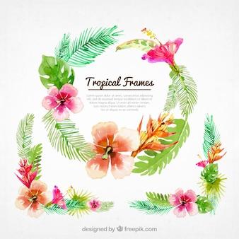 Watercolor floral frames background