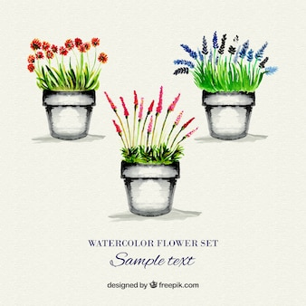 Watercolor flowerpots