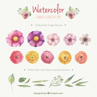 Watercolor flowers and leaves DIY pack