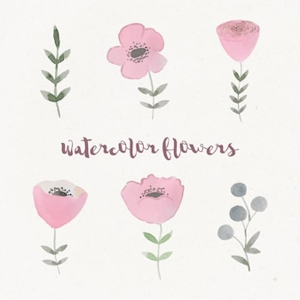 Watercolor flowers design