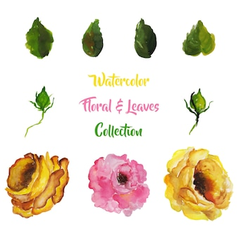 Watercolor flowers & leaves collection