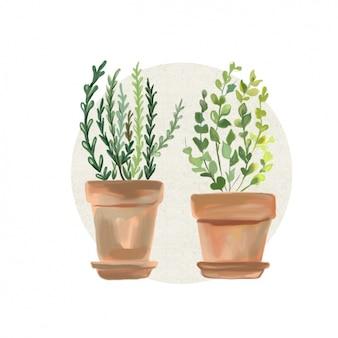 Watercolor flowers pots design