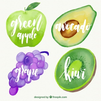 Watercolor fruit pack