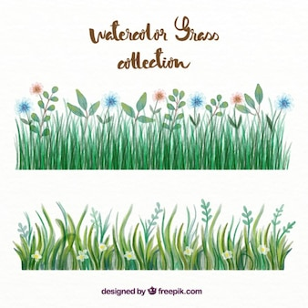 Watercolor grass with flowers set