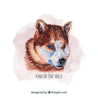 Watercolor hunting wolf