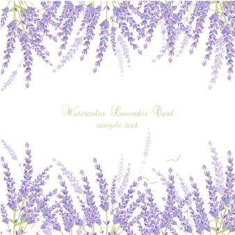 Watercolor lavender card