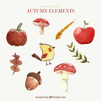 Watercolor pack of autumn elem