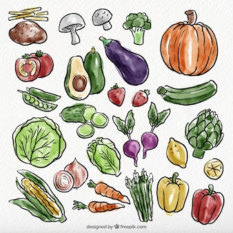 Watercolor pack of healthy food