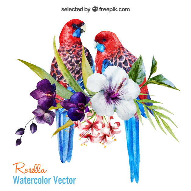 Watercolor parrots and flowers