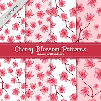 Watercolor patterns of cherry blossoms