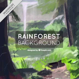 Watercolor rainforest background