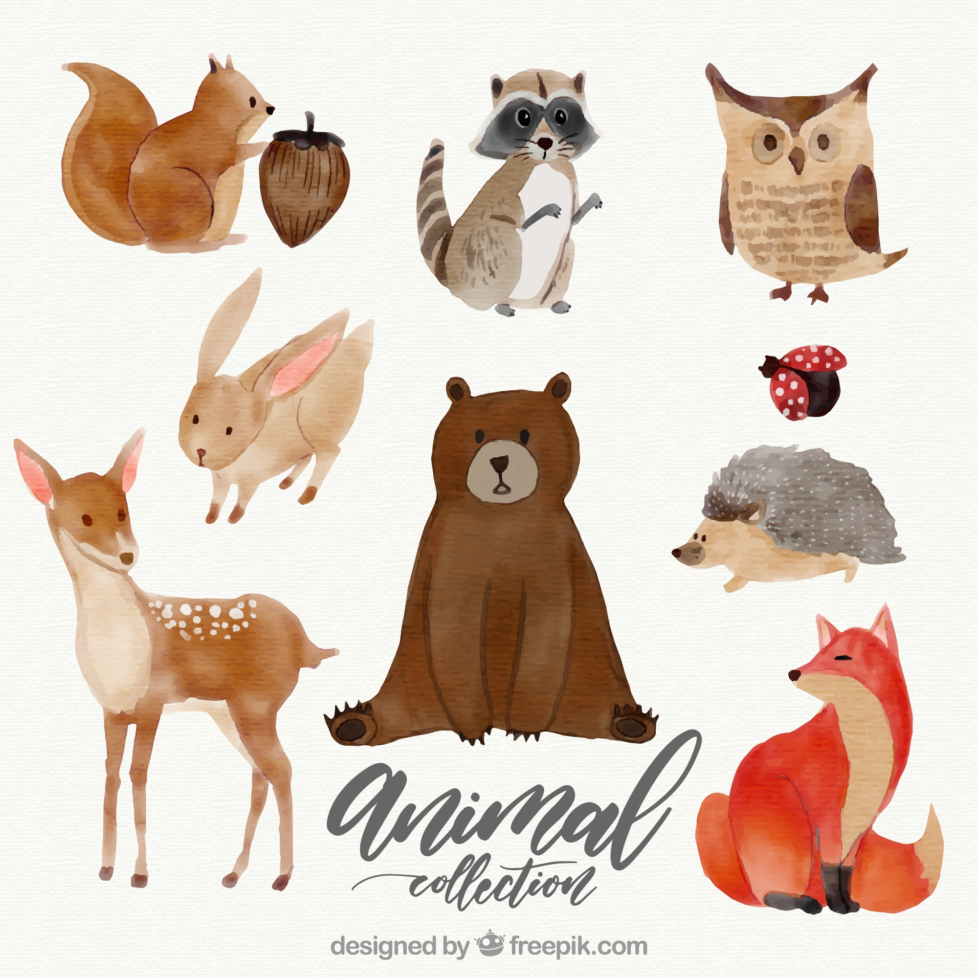 Watercolor set of lovely animals