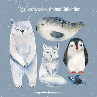 Watercolor set of polar animals