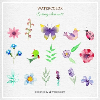 Watercolor spring elements