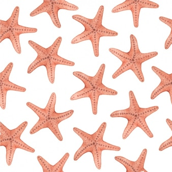 Watercolor starfishes pattern