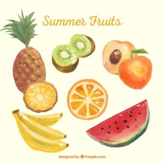 水彩夏の果物
