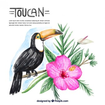 Watercolor toucan with flower decoration