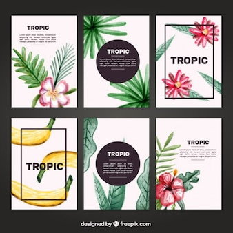 Watercolor tropical cards set