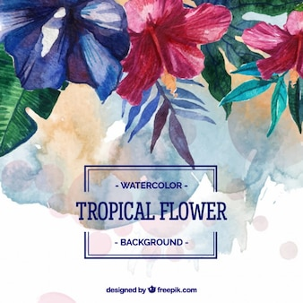 Watercolor tropical flower background