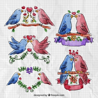 Watercolor Valentine Day Bird Collection