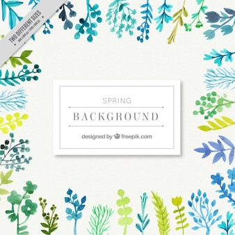 Watercolor variety of leaves background