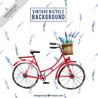 Watercolor vintage bicycle with lavander background