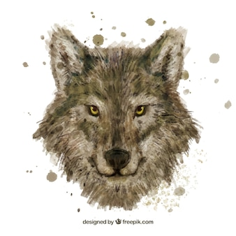 Watercolor wolf head