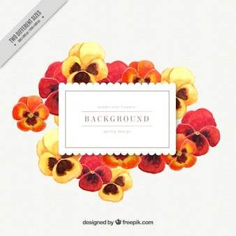 Watercolor yellow and red poppies label