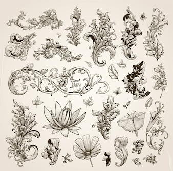 Wedding flourish nature decorative pattern