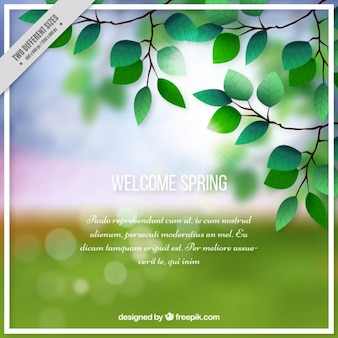 Welcome spring bokeh background