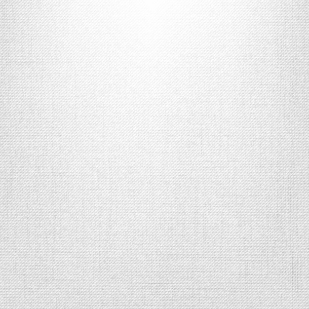White canvas background