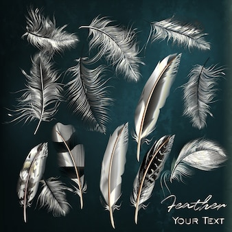 White feathers collection