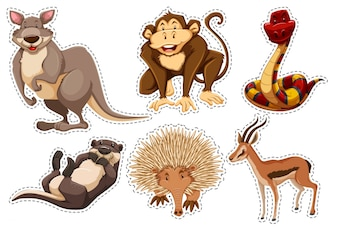Wild animal stickers collection
