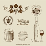 Wine collection in hand drawn style